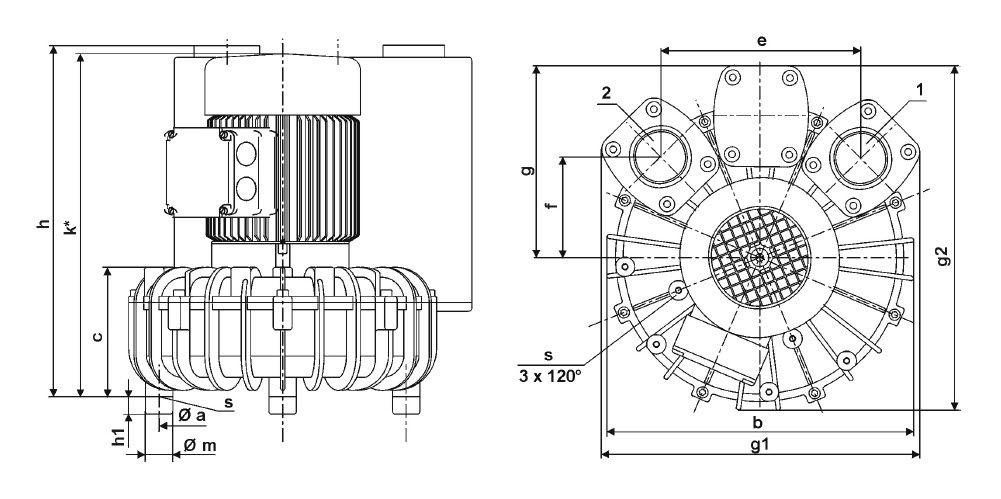 конструкция воздуходувки becker sv одноступенчатая
