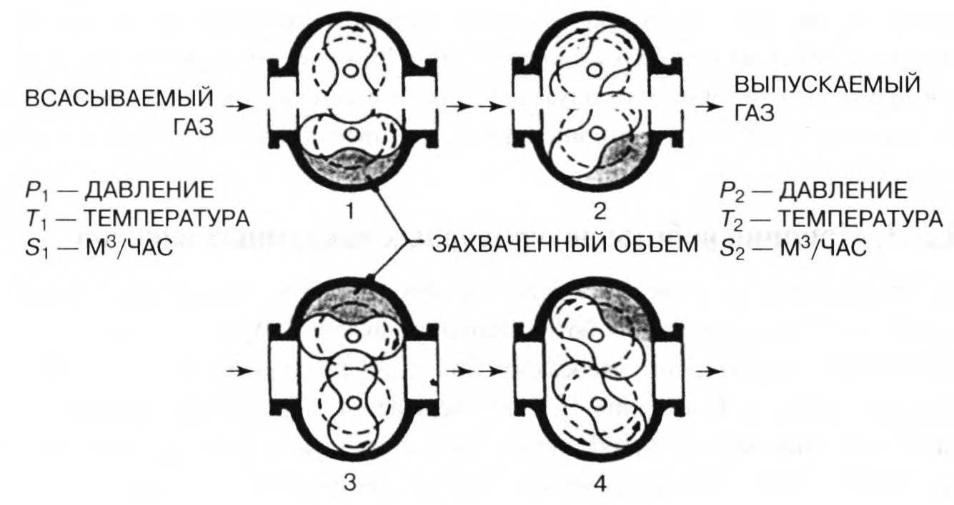 принцип откачки двухроторного вакуумного насоса